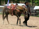 Cowboy Mounted Shooting 02