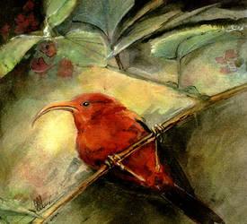Red Bird by frostcrystal
