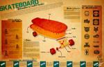 Skateboard Infographic