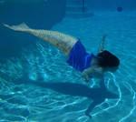 Mermaid Silverwing