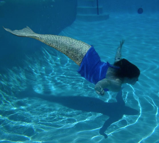 Mermaid Silverwing by TF-DiVinci