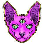 Purple Spynx Cat By Hailee Howard W Background