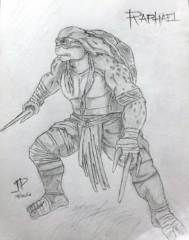 Raph Sketch