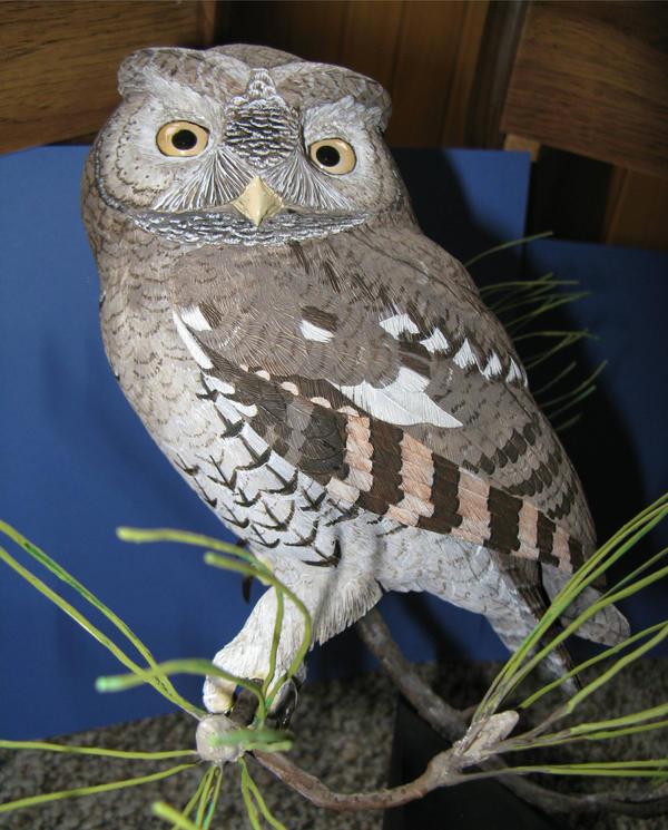 Screech Owl 2 by Bagheera3