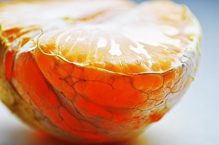 Rhyme With Orange.. by lizabif-f