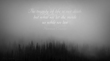 The Tragedy of Life is Not Death . . .