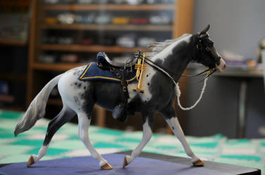 Peter Stone - CAVALRY HORSE by NyxVivendi