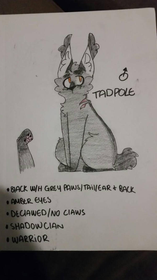 Tadpole Warrior Oc by bundleofdogs