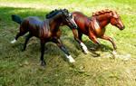 Racing Royalties