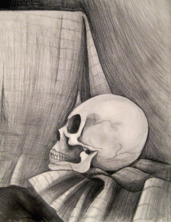 Skull Still life by snosnke0321