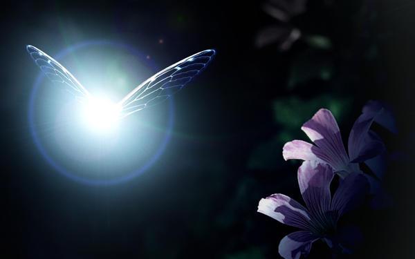 Zelda Fairy - Bing images