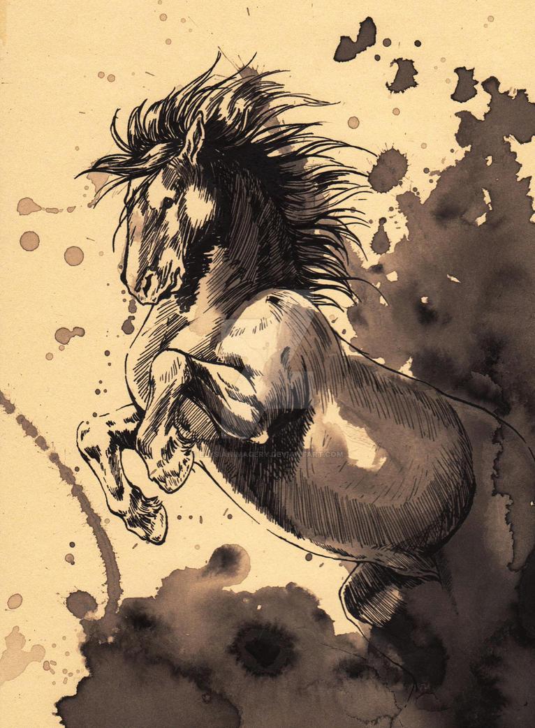 Dawn Rider by ElysianImagery