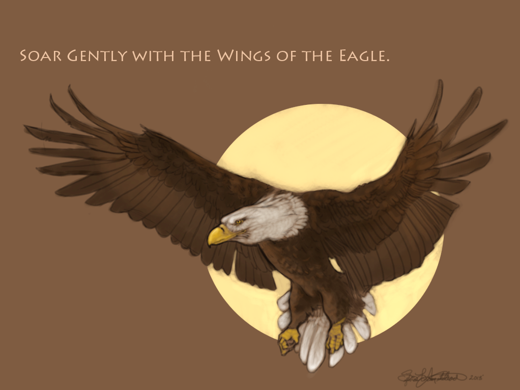 Eagle-sketch by ElysianImagery