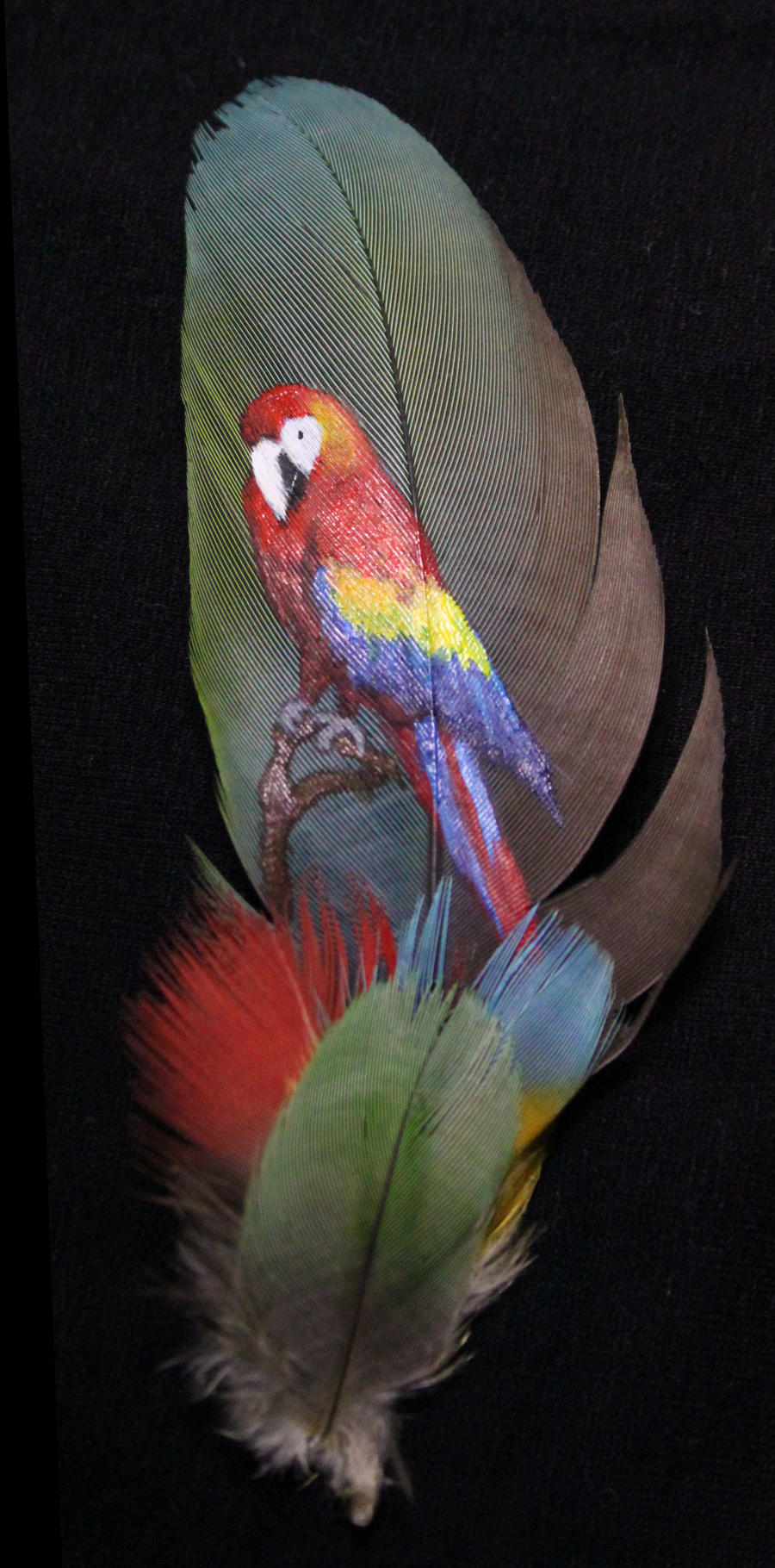 Macaw feather painting by marahuta on deviantart for Painting feathers on canvas