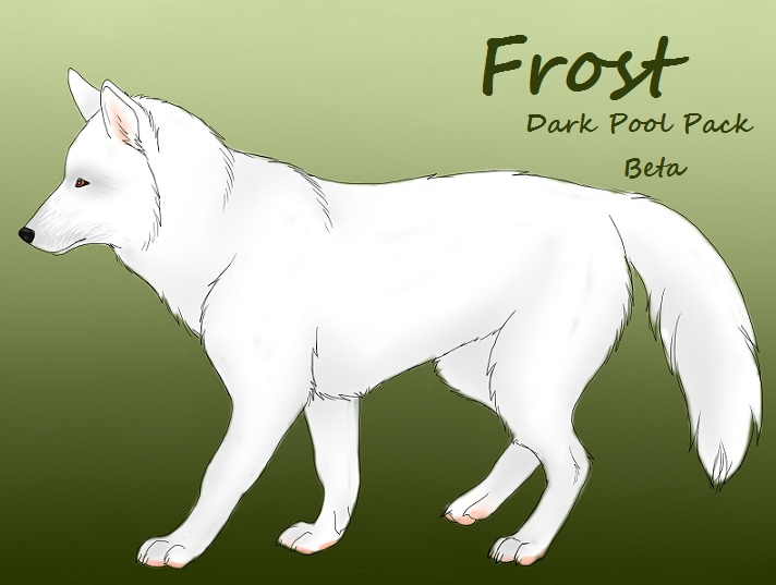 Character Ref Frost by Hotah-Wahya