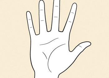 Draw Anime Hand