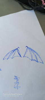Bat wings beginners