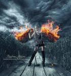 ~ Fiery Wings ~