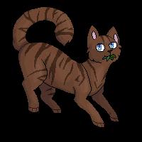Littlecloud- Med. cat of shadowclan by Raviolios