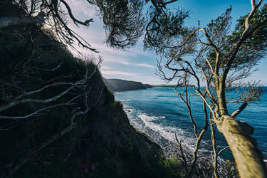 6133, Cape Schanck. by thespook