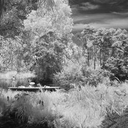 278, Botanic Gardens, Melbourne.