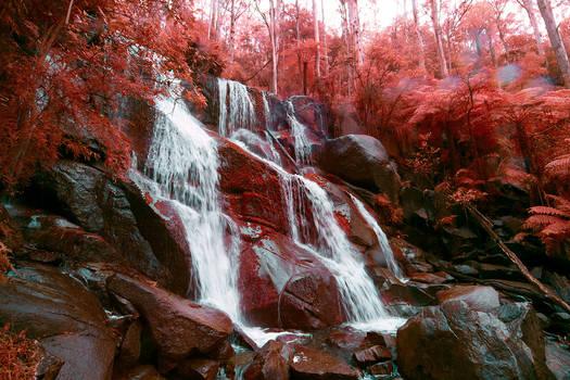 98, Toorongo Falls.