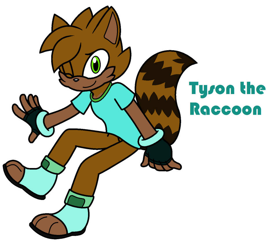 Tyson the Raccoon