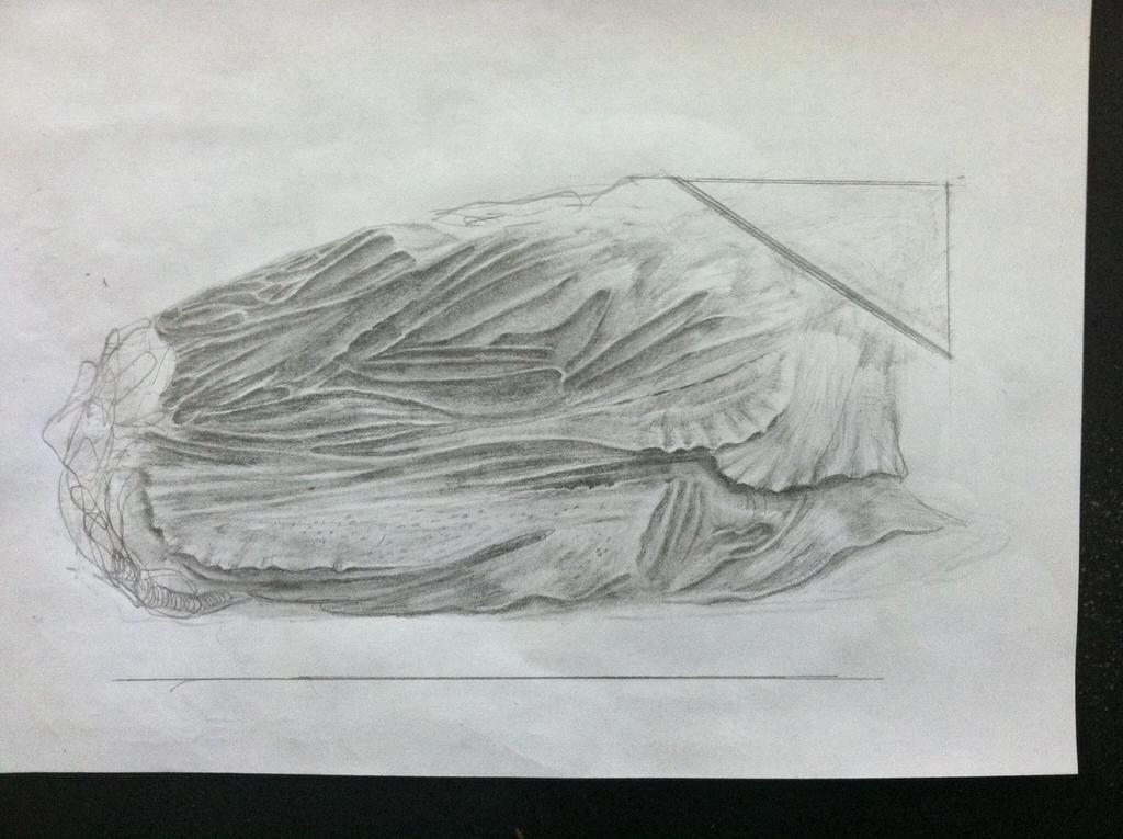 Bioform sketch 121614 by Senecal