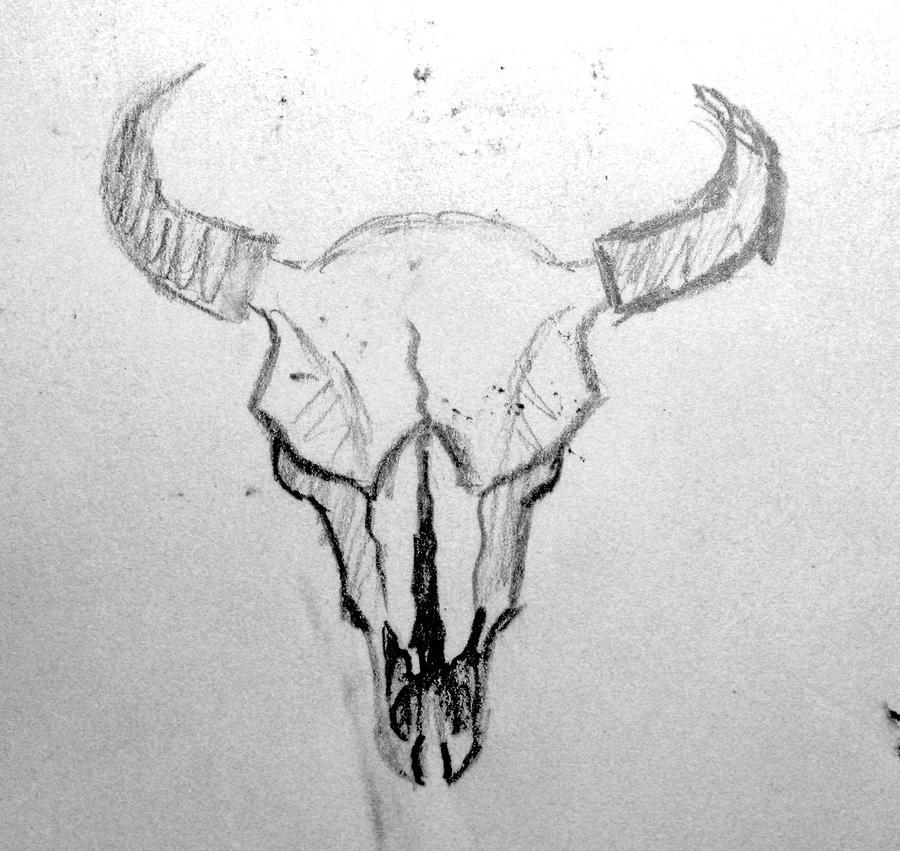 Bison a Bison Skull by Fffim