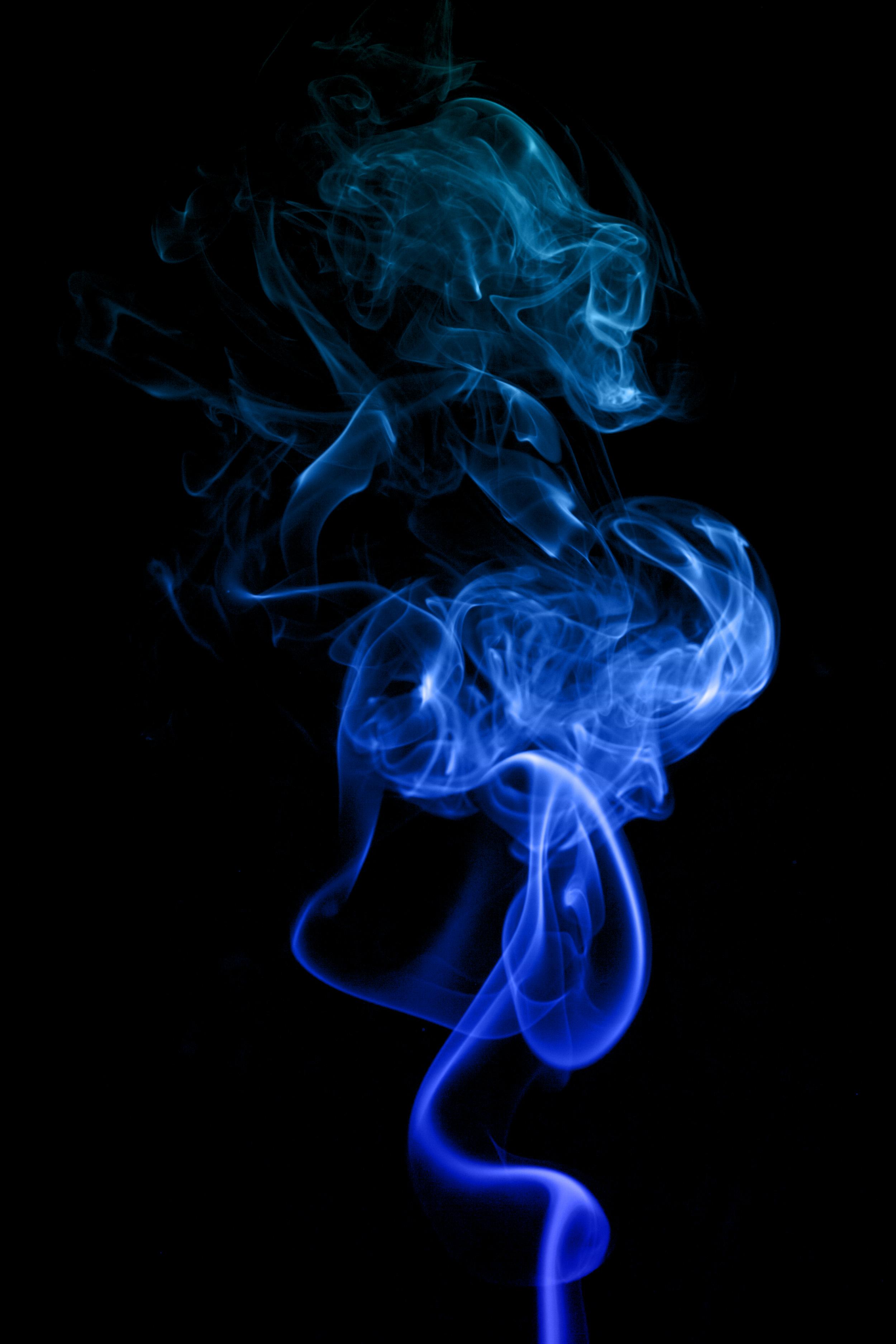 Smoke Blue Wall Decor : Blue dragon smoke art by black night shade on deviantart