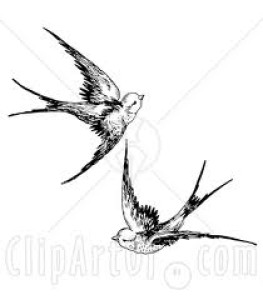 Rainswallow-11's Profile Picture