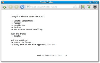 My Firefox installation.