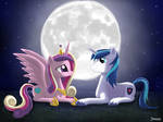 Just Married in the Moonlight