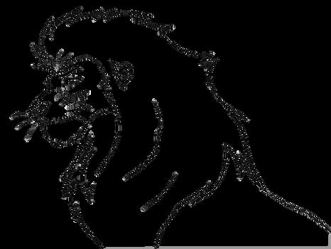 Free lineart -head male lion
