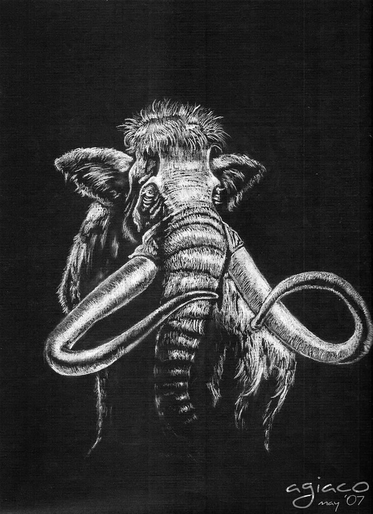 mammoth drawing by anthony-g
