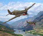 23rd FG P-40 Warhawks