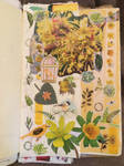 Yellow Flowers. Collage #21 by 3u3a