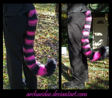Commission: Cheshire Cat-Fox by Archaeidae