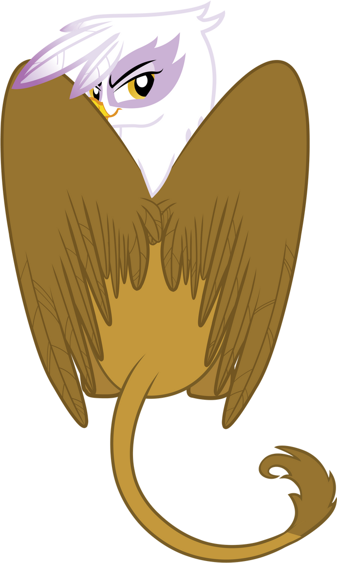 Gilda the Brush Off by Archaeidae