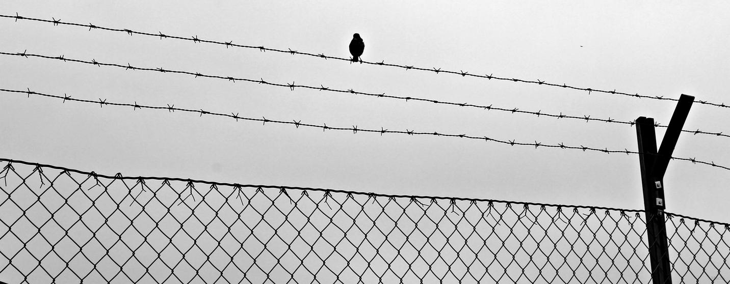 Whistleblower by Machi-Ramen