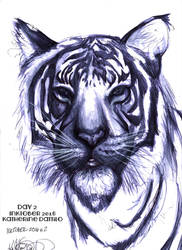 Inktober 2016 2  Tiger by KatTheGrrreat