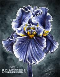 Inktober Day 10 Iris by KatTheGrrreat