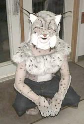 Farley the Lynx