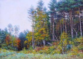 Autumn etude by peterberg2006