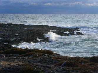 seastock 01