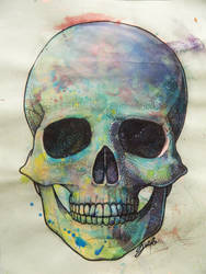 Color Skull by videovida