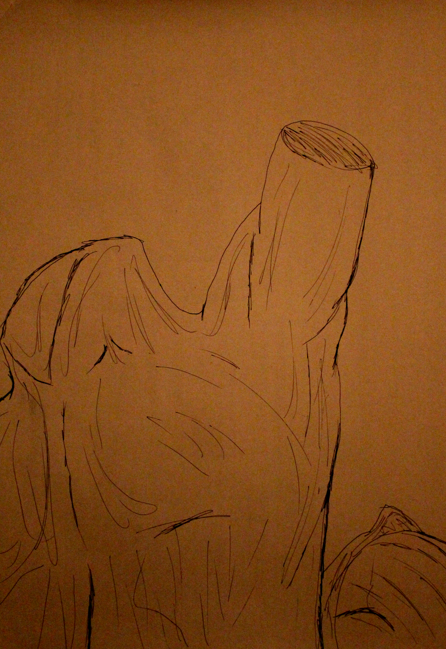 Contour Line Drawing Of Figures : Contour and figure study by aaronmk on deviantart