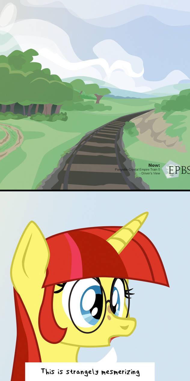 Equestrian TV