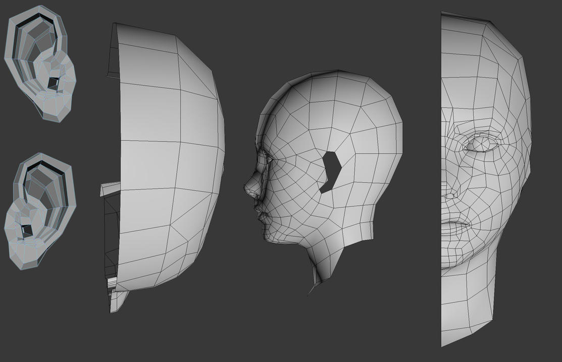 My Face Wireframe Example by kasigawa