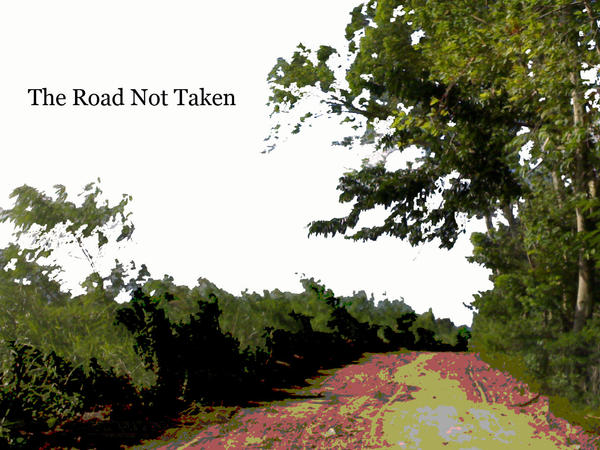 The Road Not Taken by shang22 on deviantART